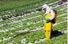 Aspiración Industria Fertilizantes